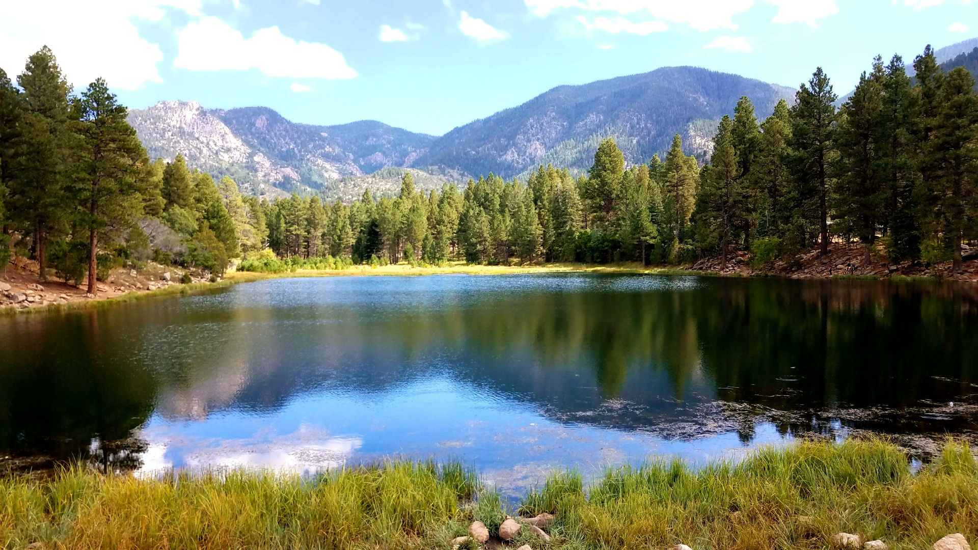 Pine Valley 17