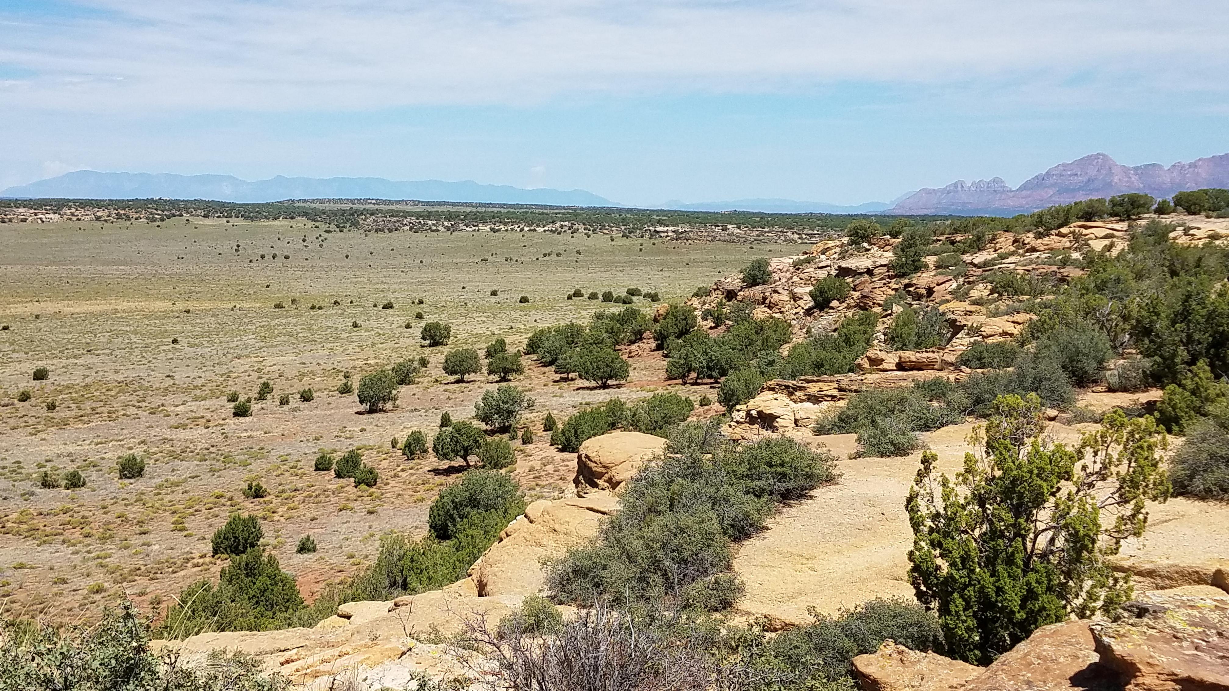 The Ridge 22