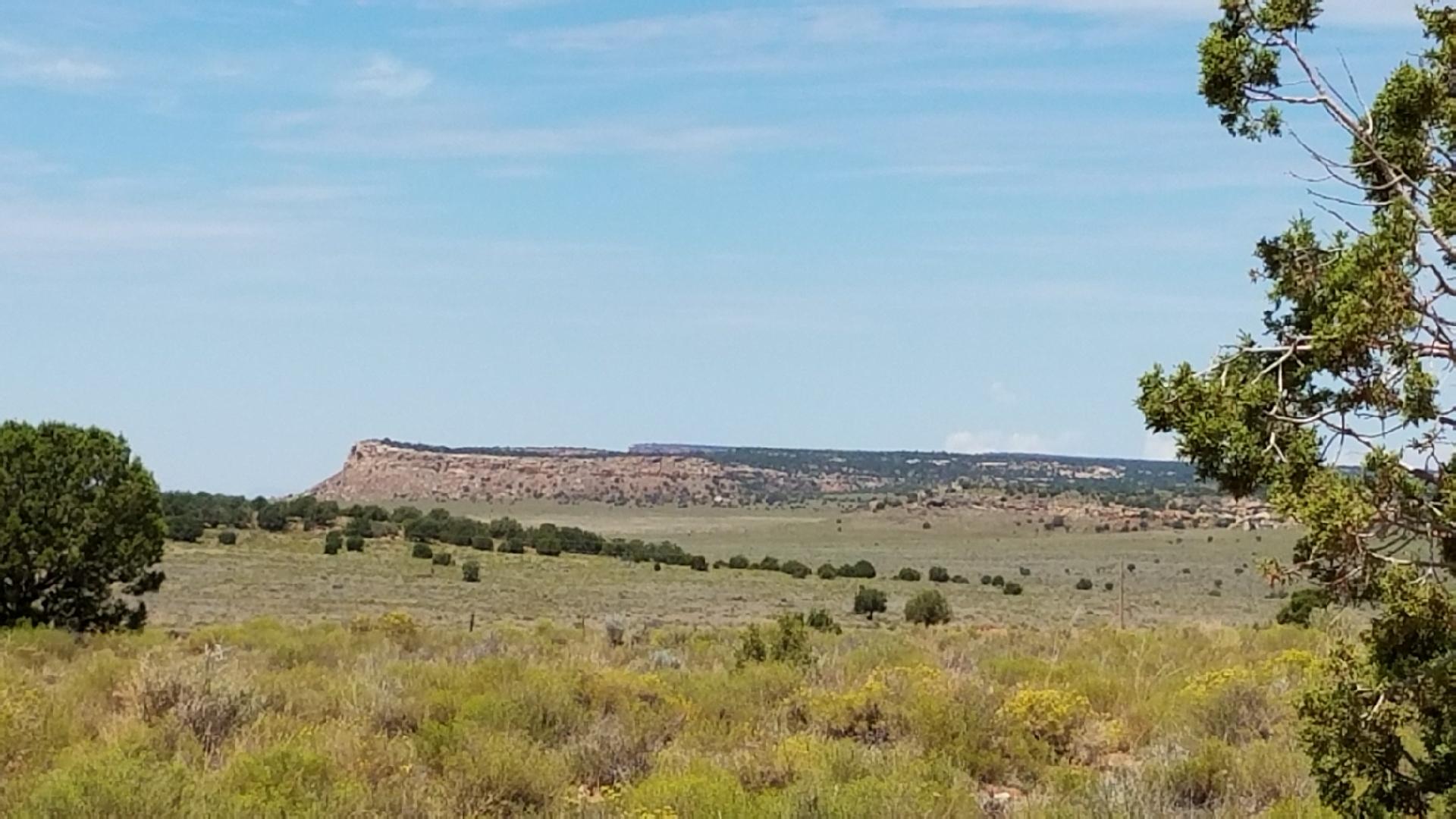 The Ridge 3