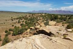 The Ridge 24