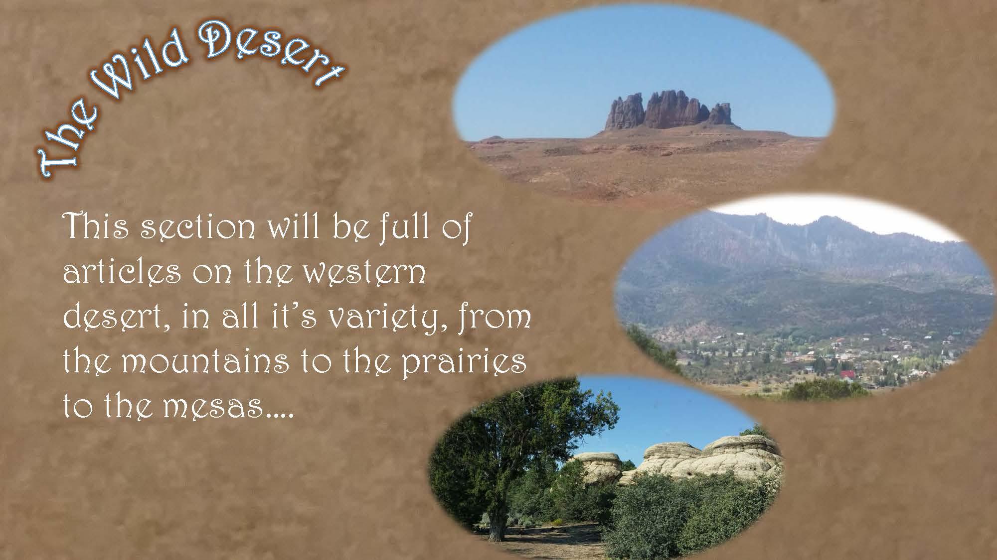 Wild Desert Slideshow_Page_2
