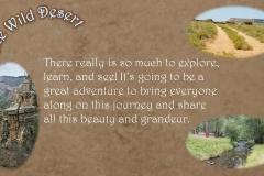 Wild Desert Slideshow_Page_5