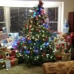 Christmas Tree 2015-2