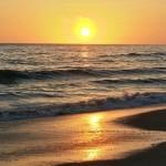 Harvey Beach for website